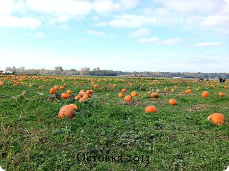 october 2013 33