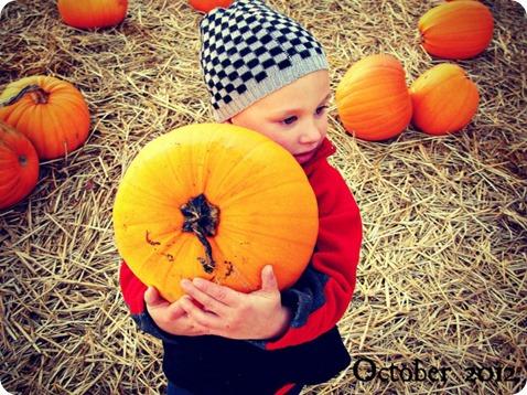 fall 1 2012