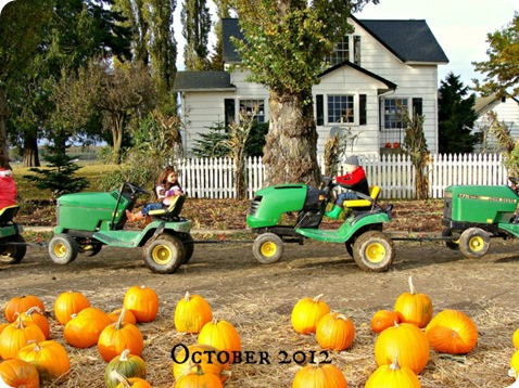 fall 11 2012