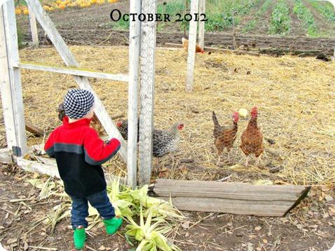 fall 33 2012