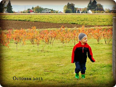 fall 6 2012
