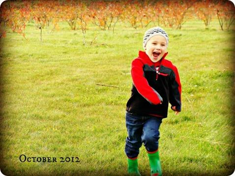 fall 7 2012